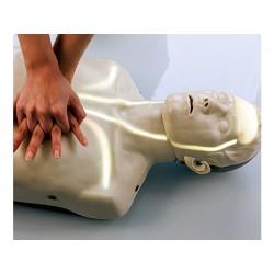 Brayden CPR Trainings Manikin G3